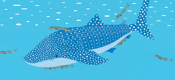 fishes whale shark